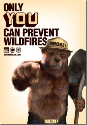 PSA- Forest Fires2